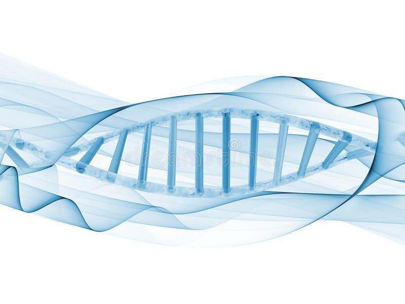 Spirale d'ADN illustration de vecteur
