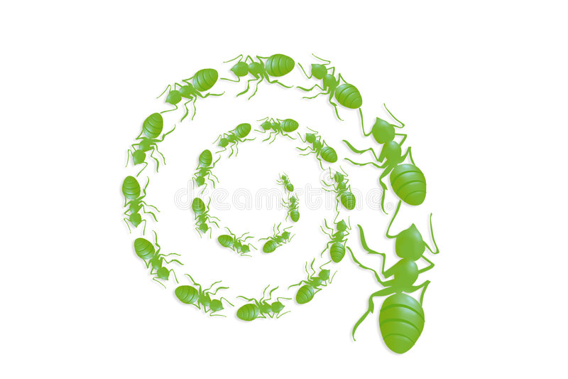 spirale de file d'attente de fourmi image libre de droits