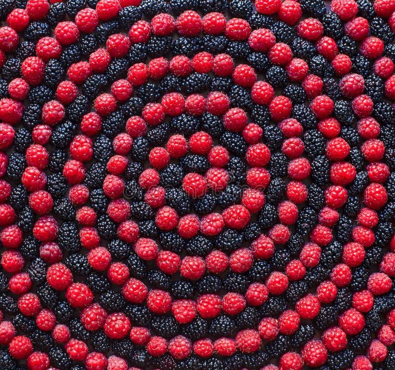 Spirale der Beere Himbeere und Maulbeere stockfotos