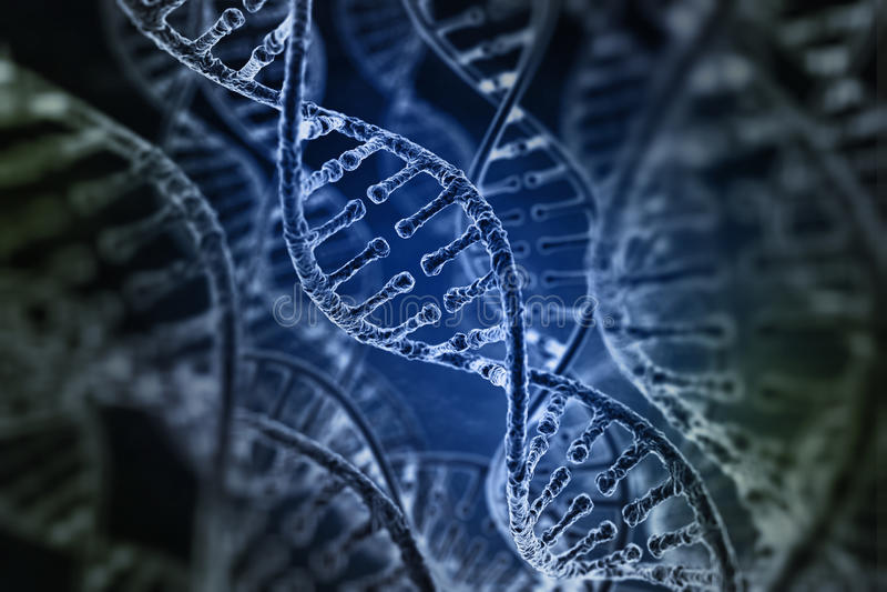 Spiraltrådar av DNA:t vektor illustrationer