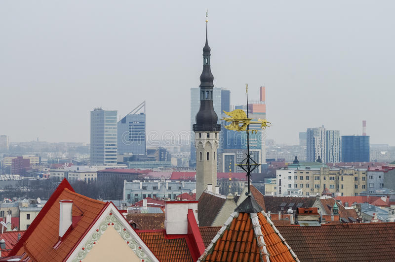 Spire of town hall and roof of Tallinn old medieval city. Skyscrapers of new part of the city at background. Tallinn, Estonia royalty free stock image