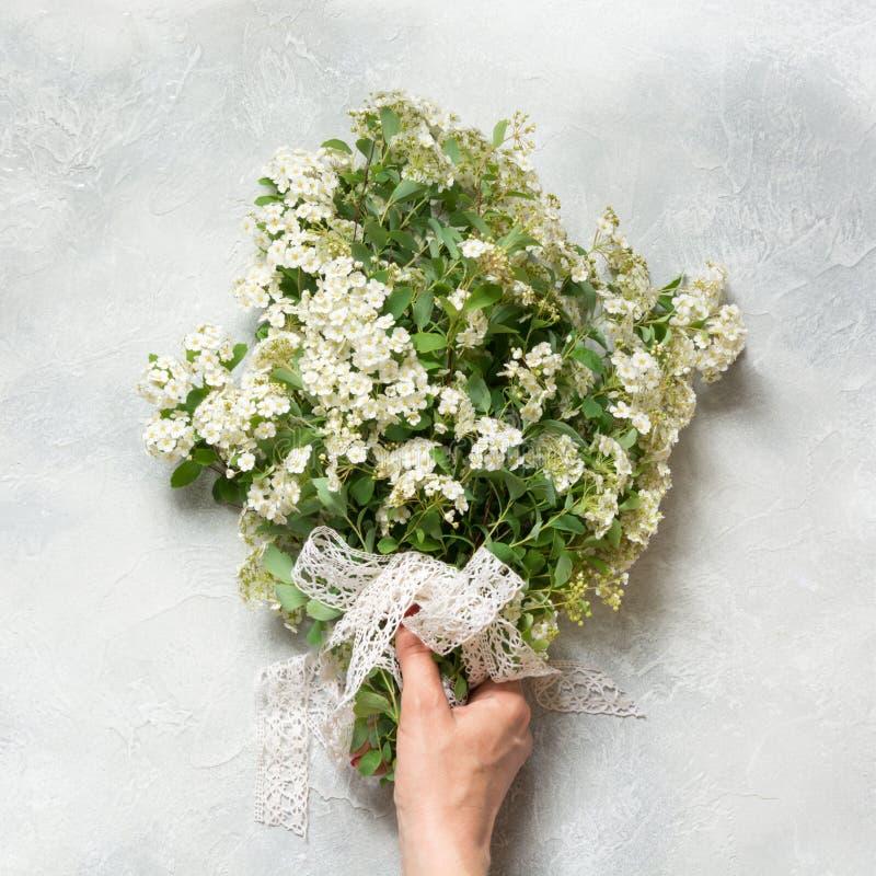 Spirea blanc de fleur de ressort de bouquet dans la main femelle sur le fond clair Vue supérieure image libre de droits