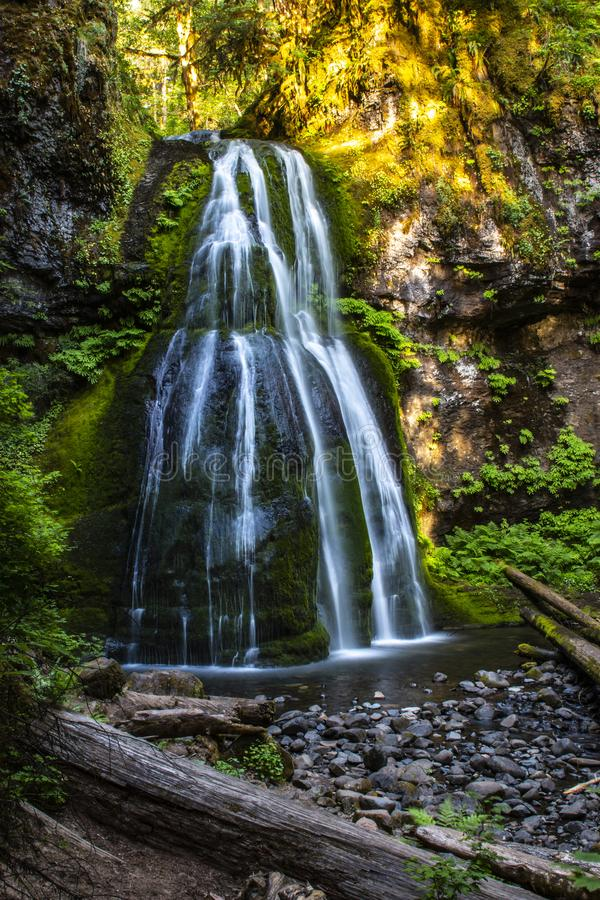 Spirit Falls cascading waterfall in Oregon of the pacific northwest royalty free stock photos