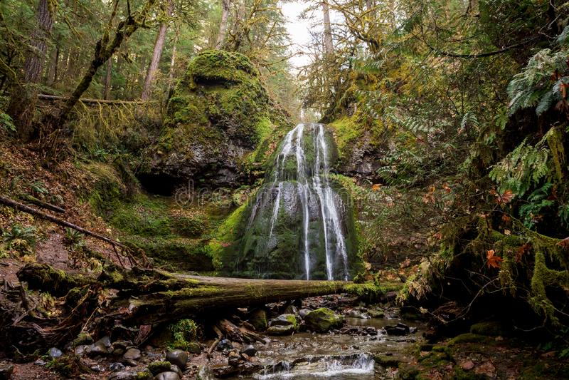 Spirit Falls Umpqua National Forest in Oregon royalty free stock image