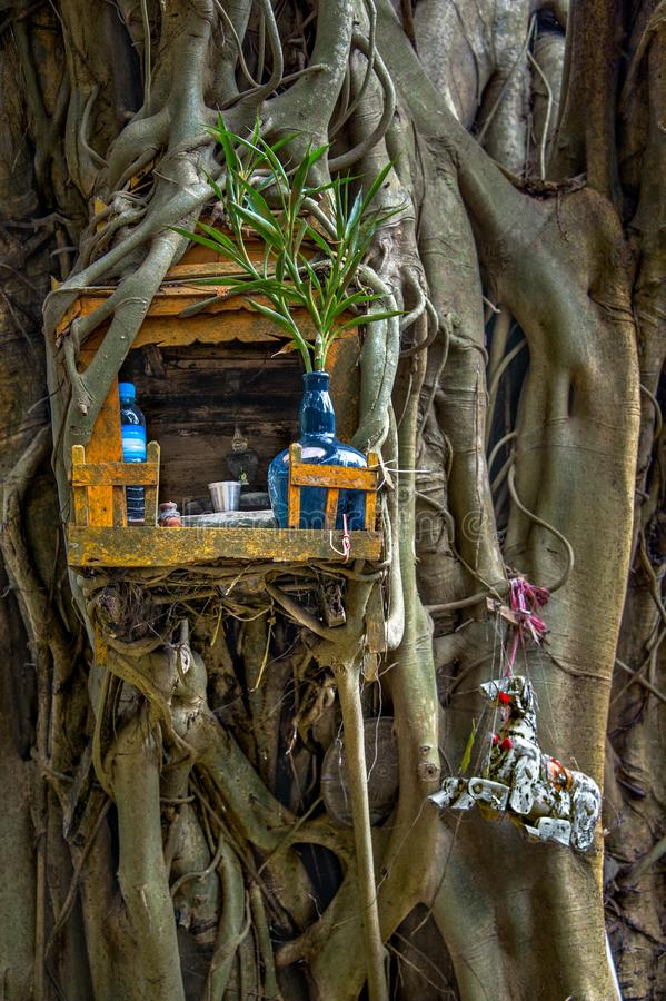 SPIRIT HOUSE AND TREE ROOTS INTERTWINED. stock photos