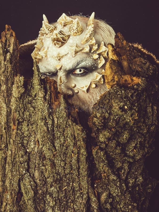 Spirito dell'albero e concetto di fantasia immagini stock