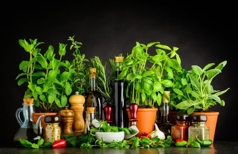 Spirito di natura morta che cucina gli ingredienti, le erbe e gli utensili immagini stock