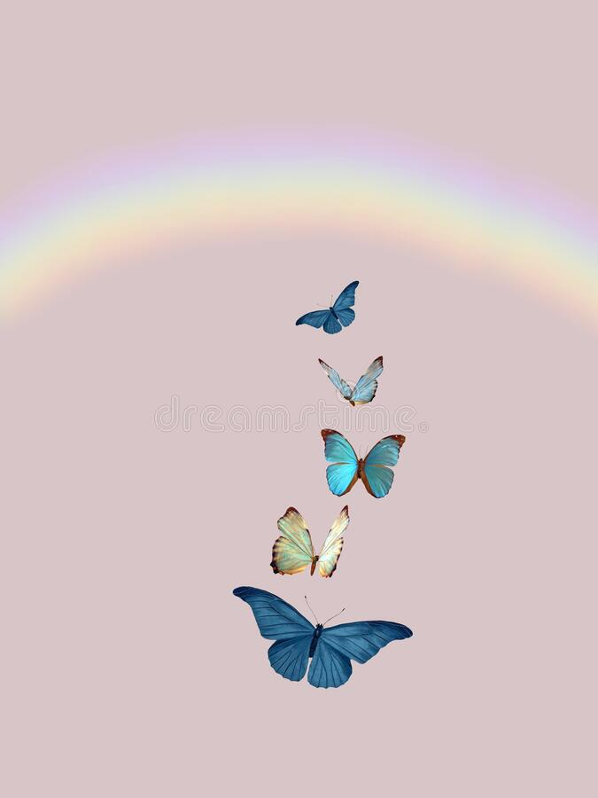Spiritual background for meditation with butterflies and rainbow isolated in color background stock image