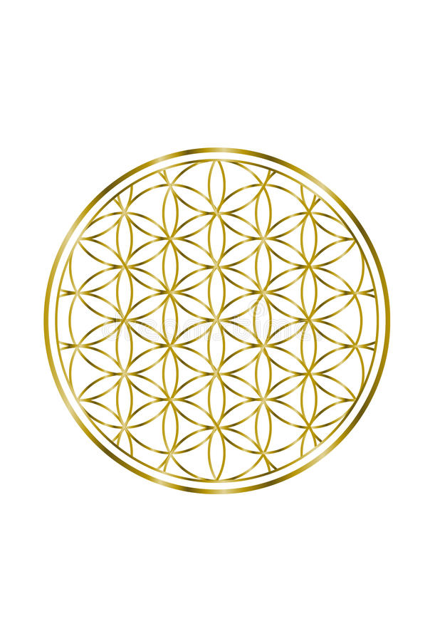 Spiritual Flower of Life Gold Illustration 1 vector illustration