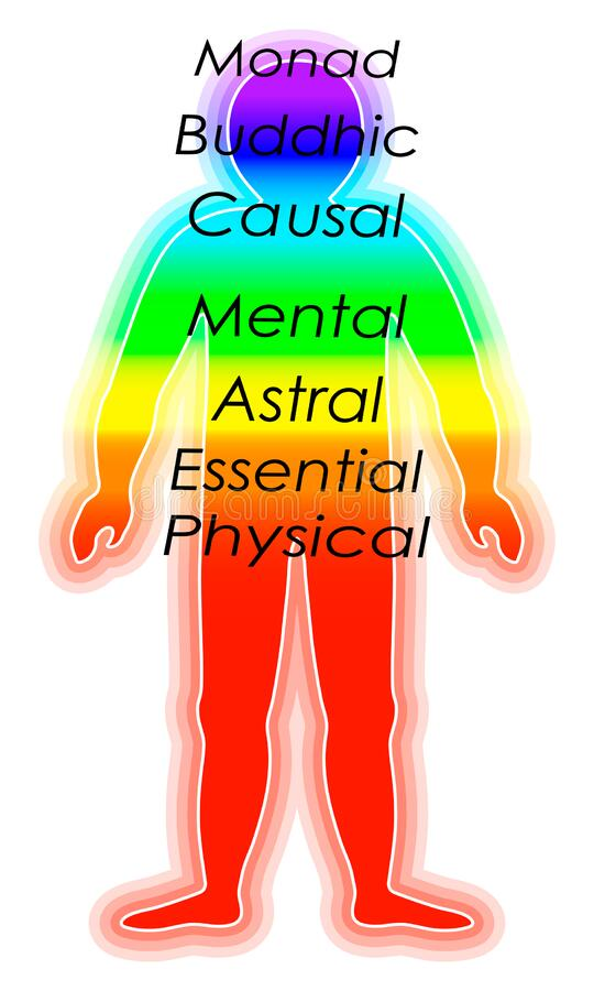 Spiritual growth, Rainbow color marked layers of the male body. The etheric, emotional, metallic, astral, celestial, and causal. Layers. Isolated on white stock illustration