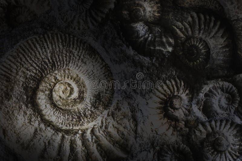 Spirlas abstract background. stock photo