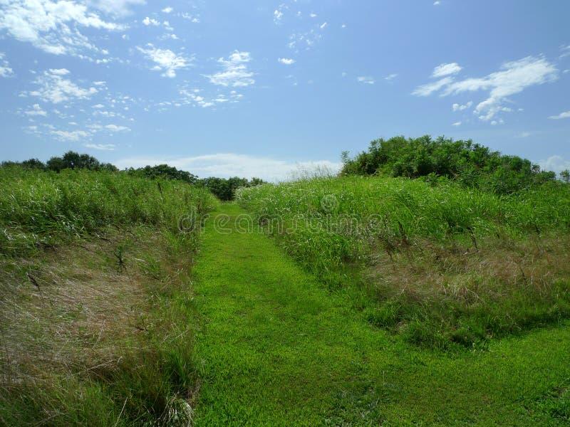 Spiro Mounds Archaeological Center kulle med den mejade gå slingan royaltyfri bild