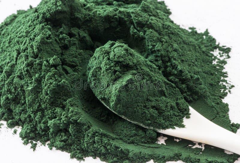 Spirulina alg proszek, zamyka up Makro-, selekcyjna ostrość fotografia stock