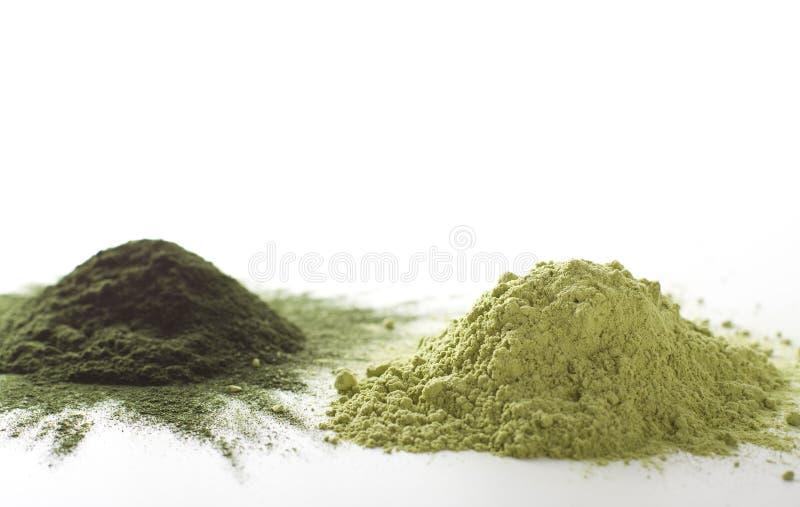 Spirulina and barley grass raw powder on white background – heap. Spirulina and barley grass raw powder on white background royalty free stock photos