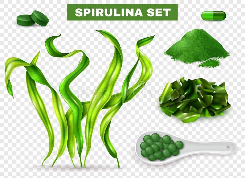 Spirulina realistisk genomskinlig uppsättning vektor illustrationer