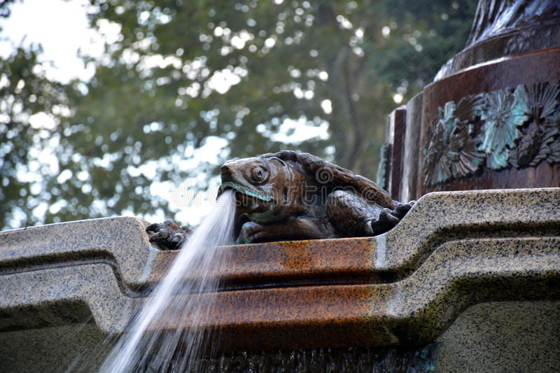 Spitting turtle. Detail of a fountain showing a turtle spewing water from its mouth stock images
