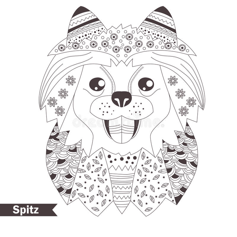 Spitz. Coloring Book For Adult Stock Vector - Illustration of breed ...