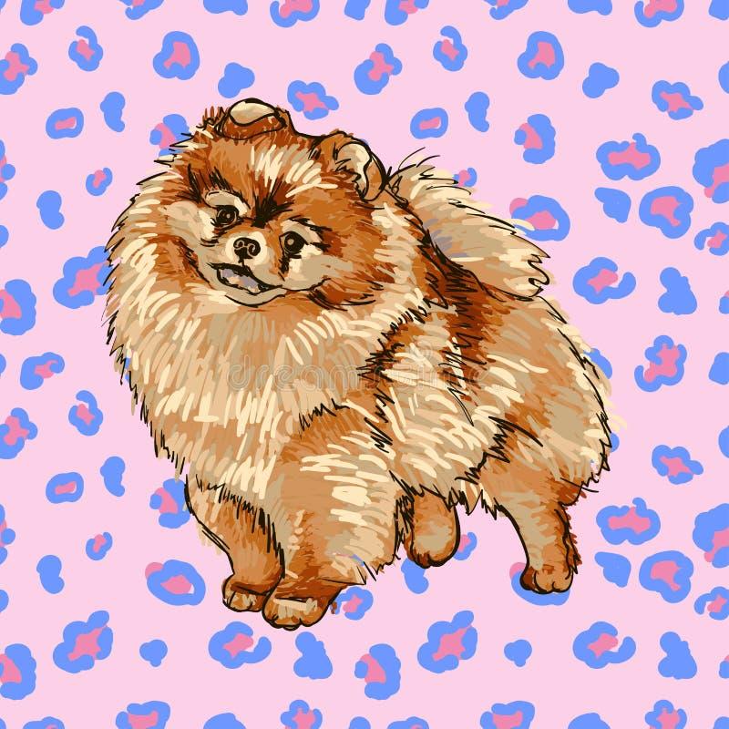 Spitz di Pomeranian illustrazione di stock