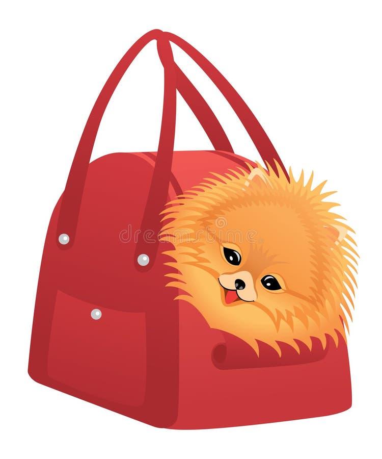 Spitz felice di Pomeranian illustrazione vettoriale