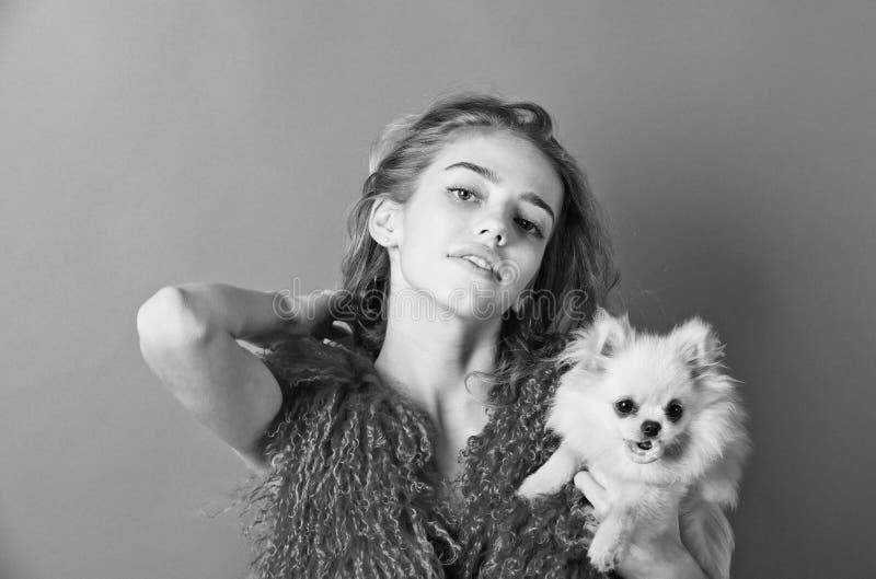 Spitz hond in handen van meisje het glimlachen op rode achtergrond stock afbeelding
