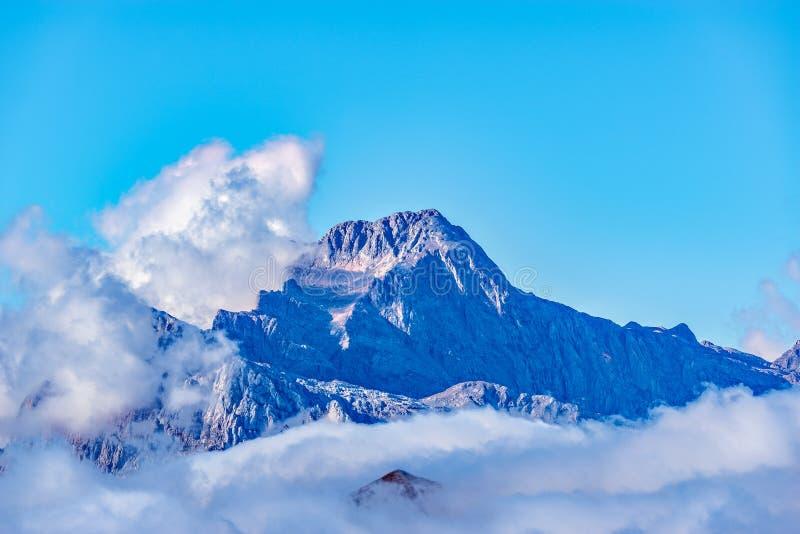 Spitze des Fisht-Berges über den Wolken lizenzfreies stockbild