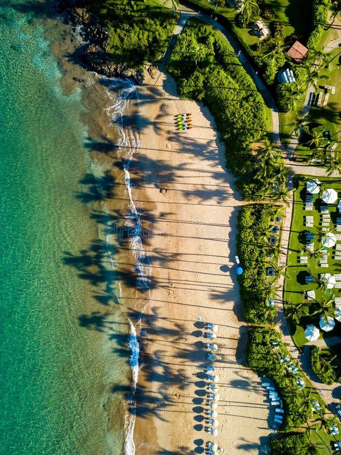 Spitze hinunter Ansicht der Maui-Küstenlinie mit langen Palmeschatten lizenzfreie stockfotos