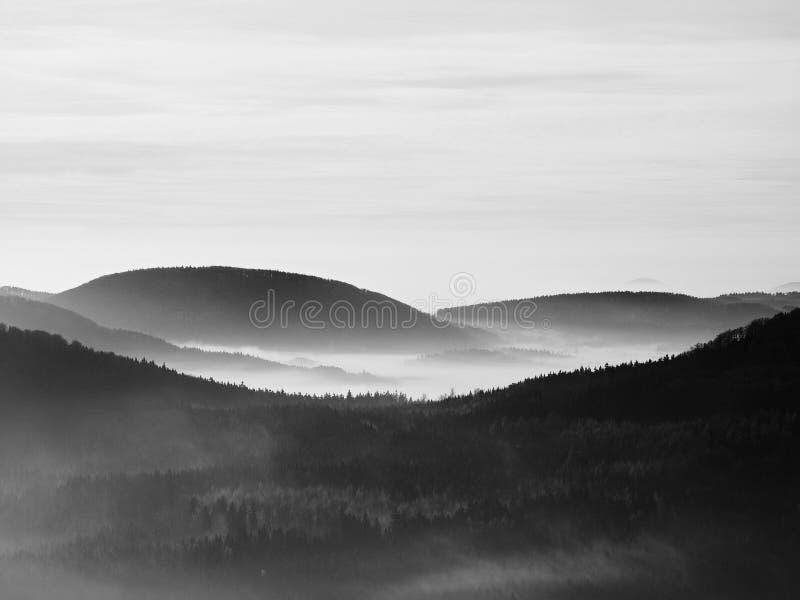 Spitzen von Hügeln und von Bäumen haften heraus von den gelben und orange Wellen des Nebels. Erste Sonnenstrahlen. Schwarzweiss-Fo lizenzfreies stockbild