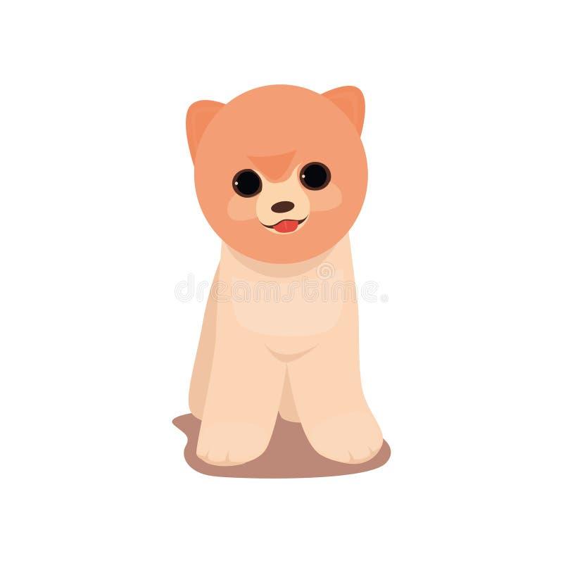 Spitzhundevorderes Gesicht lächelt mit der roten Zunge lizenzfreie abbildung