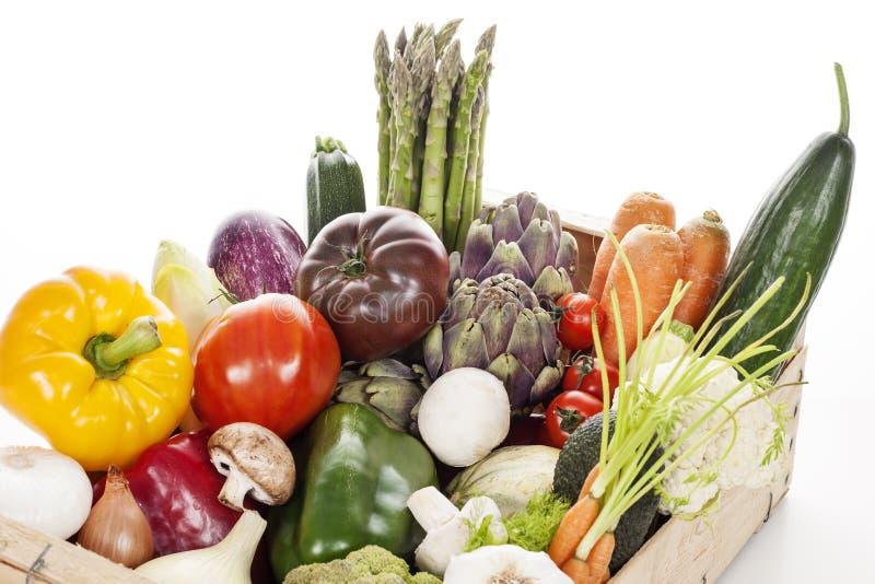 Spjällåda av rå nya grönsaker royaltyfri bild