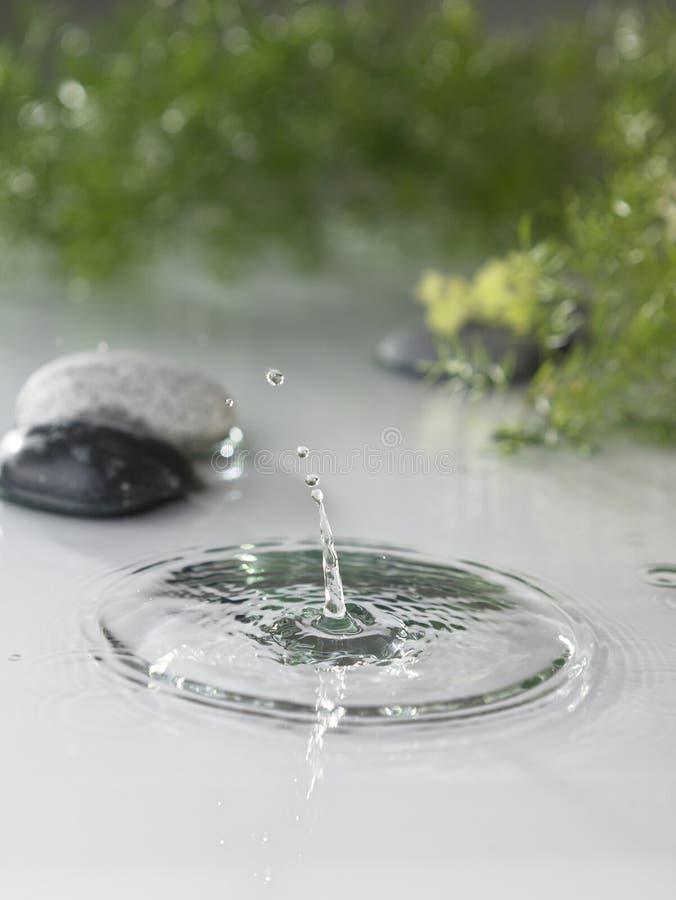 Free Splash Stock Image - 16190211
