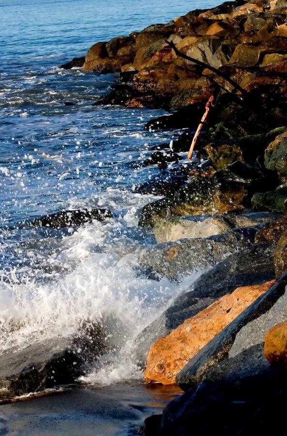 Splash of Summer royalty free stock images