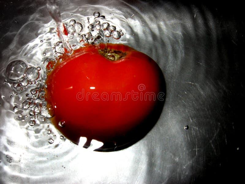 Splash of water royalty free stock images
