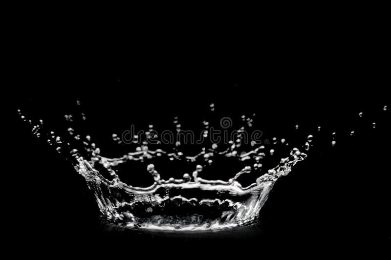 Splash of water royalty free stock photo