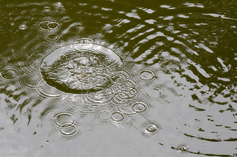 Splash water in the pond. Natural background stock photos
