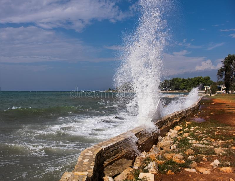 Splash. Waves. royalty free stock image