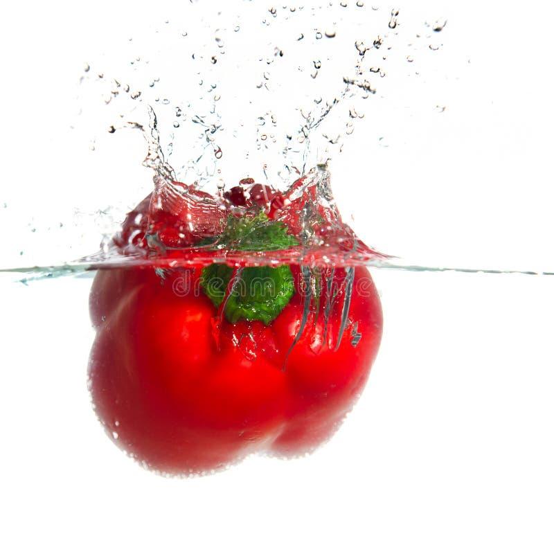 Splashing paprika royalty free stock image