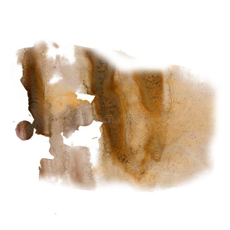 Splatter atramentu watercolour barwidła ciekłej brown akwareli punktu blotch makro- tekstura odizolowywająca na białym tle fotografia royalty free