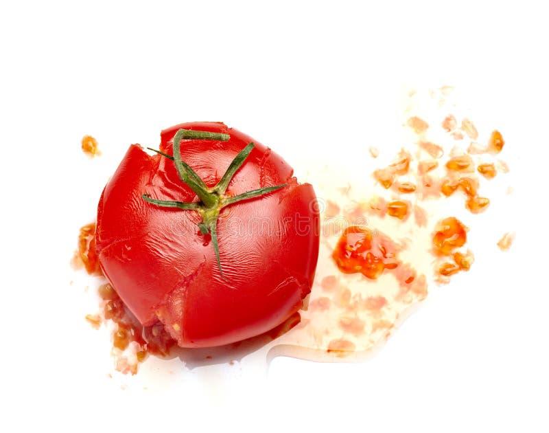 Splattered tomato. Close up of a splattered tomato on white background royalty free stock photography