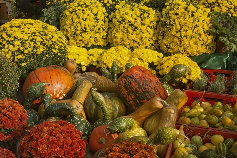 Splendeur d'automne photographie stock