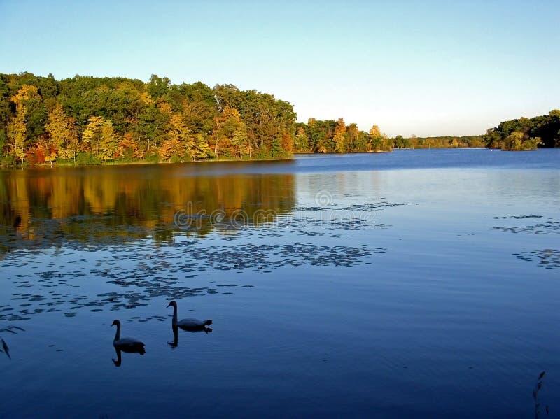 Splendeur d'automne photo libre de droits