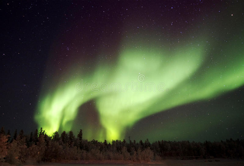 Splendid Aurora royalty free stock photos