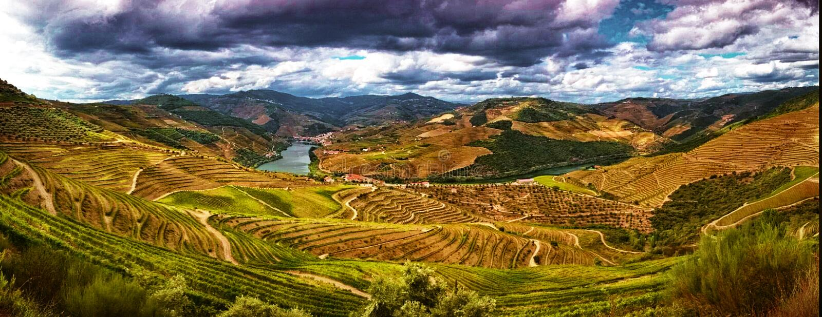 Splendid Douro valley stock photo