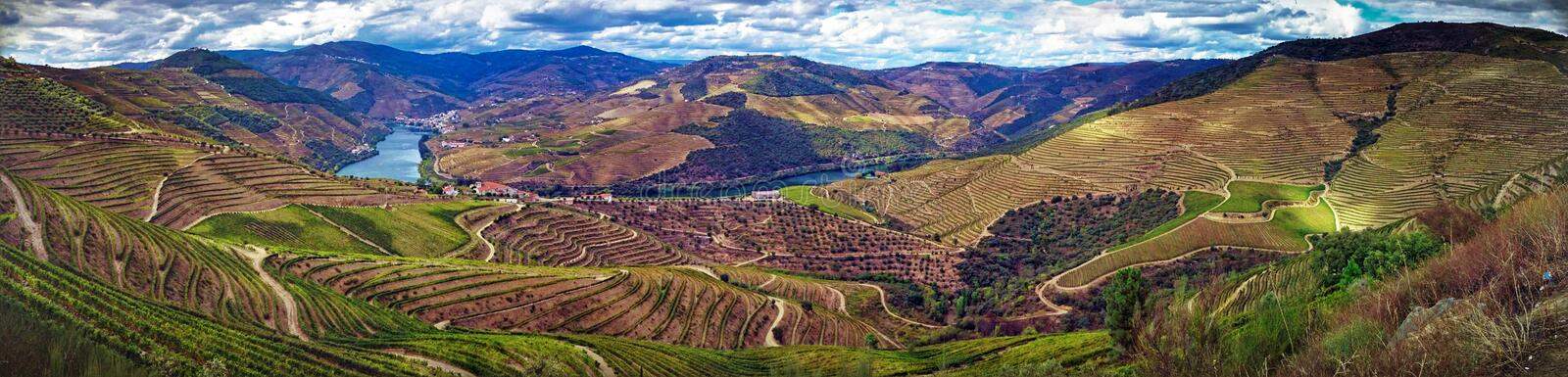 Splendid Douro valley royalty free stock photos