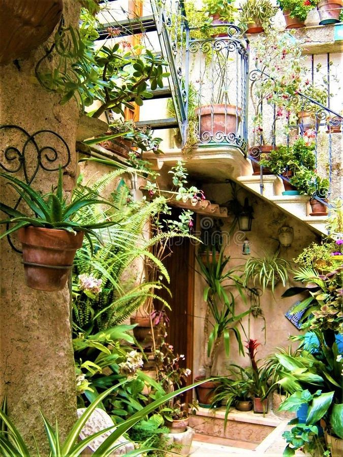 Splendid garden, enchanting yard, plants, vases, stair and flowers in Erice town, Sicily, Italy. Vegetation, greenery, door, fascinating house, beautiful home stock image