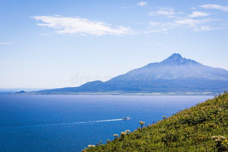 Mt. Rishiri Viewed from Rebun Island, Japan. Splendid views of Mt. Rishiri in the distance and wildflowers along the Momoiwa Observation Course hiking trail royalty free stock photo