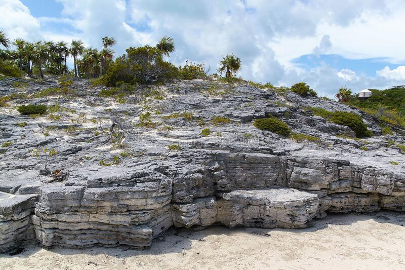 Splendida vista sulla scogliera delle Bahamas nell'oceano Atlantico immagine stock libera da diritti