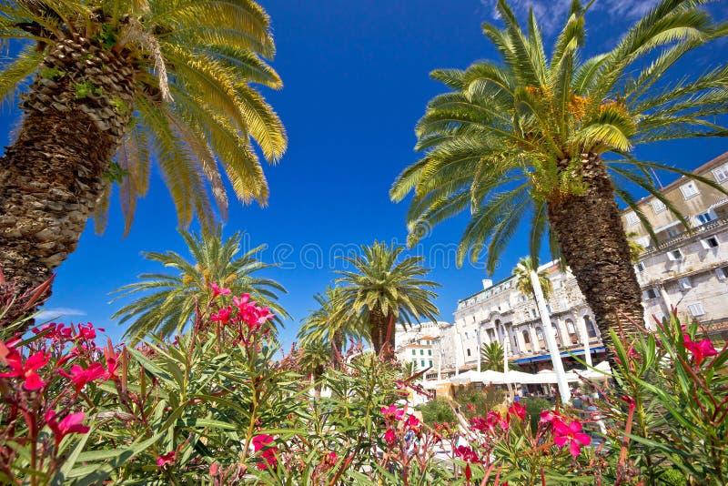 Spli棕榈江边和Diocletian的宫殿 图库摄影