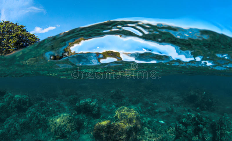 Split landscape with sea and sky. Sea water double photo. Undersea view of coral. Tropical island seashore nature. Above and below sea waterline. Blue seawater royalty free stock images