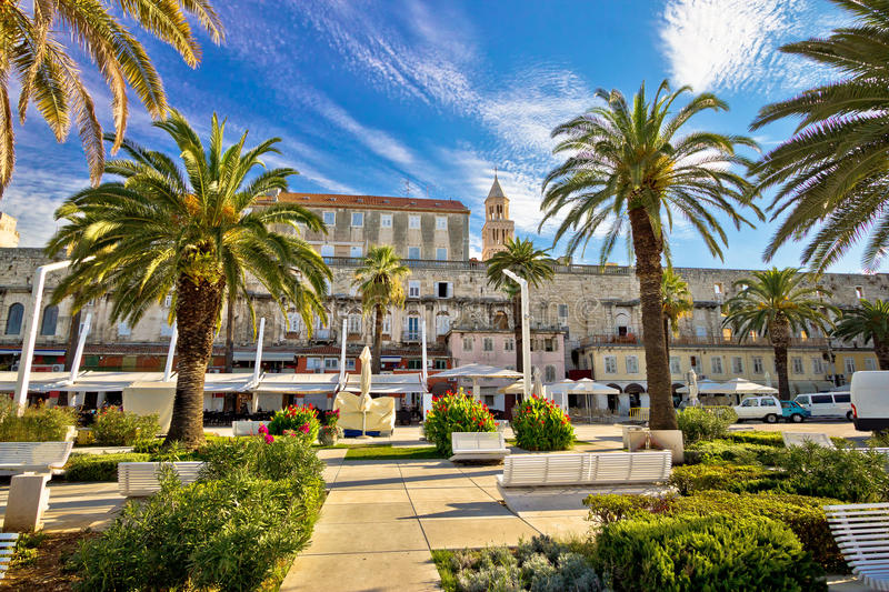 Split Riva palm waterfront view. Dalmatia, Croatia stock photo