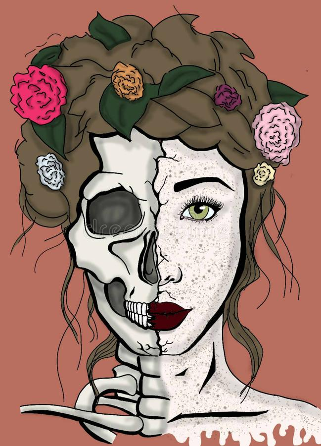 The Split Side of Beauty royalty free illustration